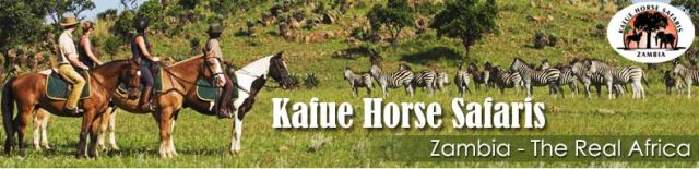 Corruption: How two British investors lost their investment in Kafue