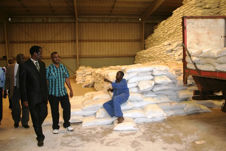 Zambia exporting maize at a loss, reveals ZCF