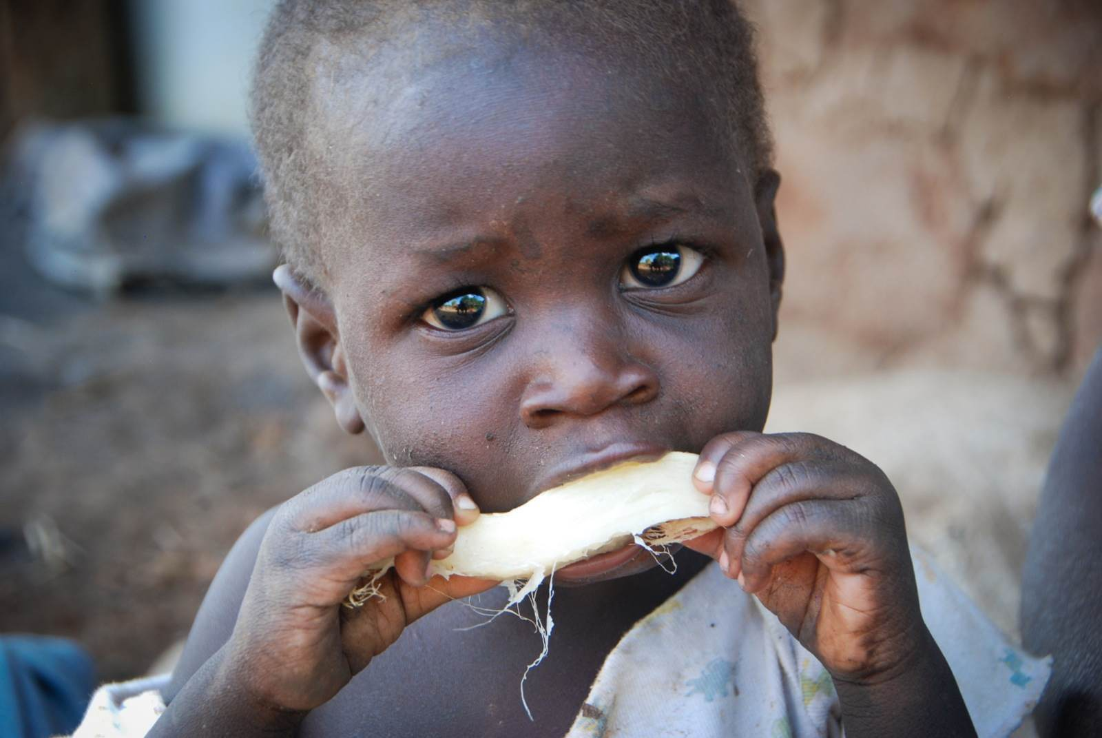 There will be worse famine in Zambia in 2020